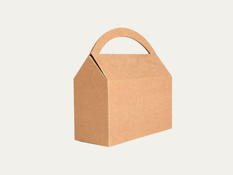 Read more about the article EFFECTUAL BENEFITS OF CARDBOARD BOXES WITH HANDLES